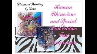 Diamond Painting First Impression - Huacan, Rhinestones & Special Drill Edition - Wolf & Owl