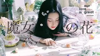 [日本語字幕]야간비행(魔女の花) - ペクイェリン(백예린)