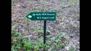 Kachanivka#M.V.Gogol's Oak (Дуб М.В. Гоголя)(Дуб Гоголя в Качанівці. Обхват 3,94 м. Висота близько 25 м. Вік близько 300 років]. Росте в парку Качанівка, Ічнянс..., 2016-07-04T14:04:54.000Z)