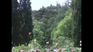 Санаторий Нижняя Ореанда(Санаторий расположен в поселке Ореанда в 7 км юго-западнее Ялты в уникальном старинном парке площадью 27..., 2013-03-15T07:59:30.000Z)