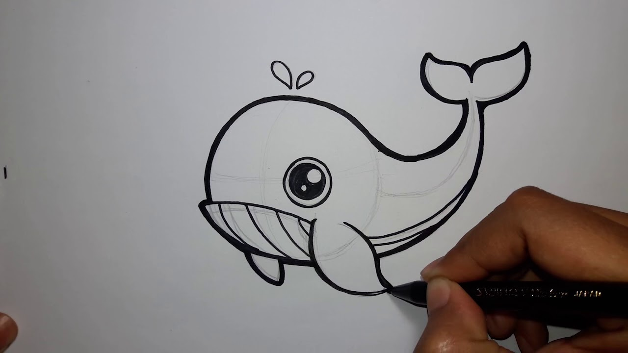 Cara Menggambar Ikan Paus | HOW TO DRAW A WHALE #1