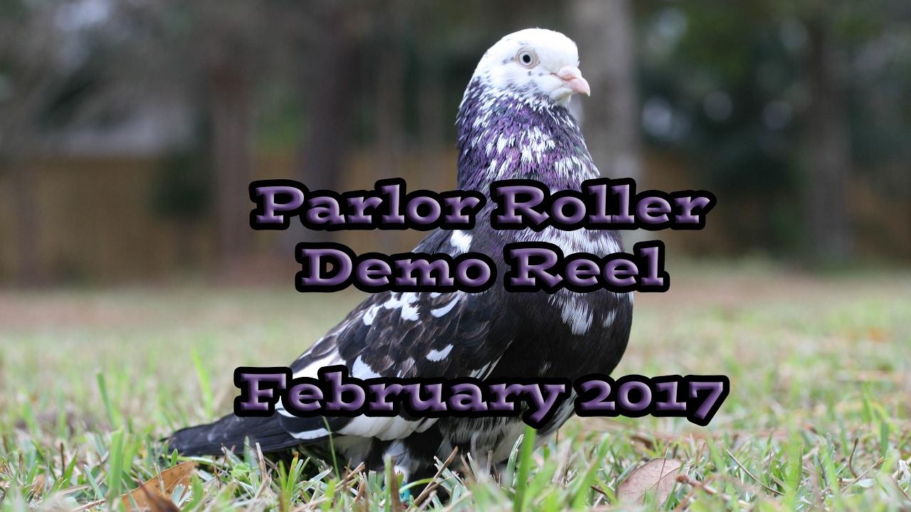 Parlor Roller Demo Reel 2017