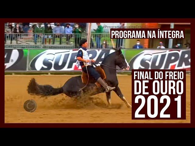 Programa CAVALOS CRIOULOS - 09/10/2021