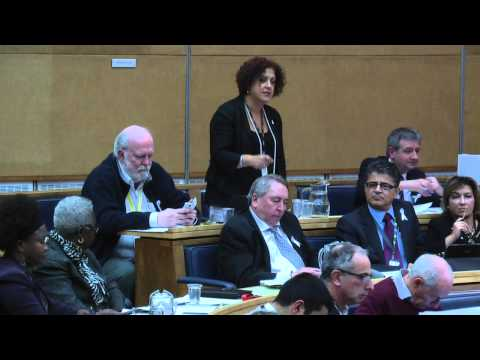 Cllr Cabinet library Enfield Council 19 Nov 2014 720p
