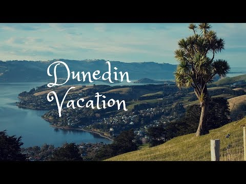 Dunedin Vacation Travel Guide