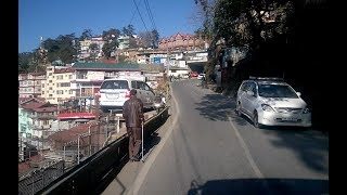 Shimla to Naldehra Road Trip