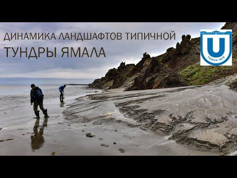 Динамика ландшафтов типичной тундры восточного берега Ямала вблизи поселка Сё-Яха