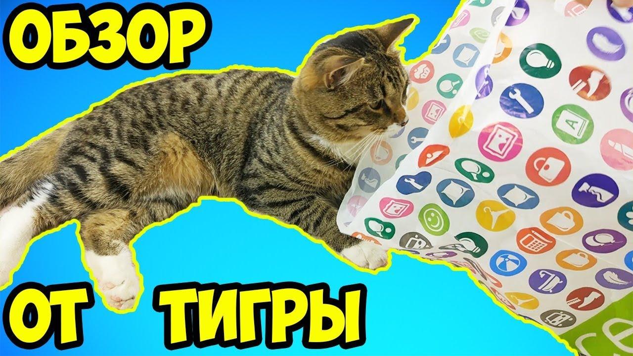Экстази Цена  Петропавловск-Камчатский Метадон legalrc Щелково