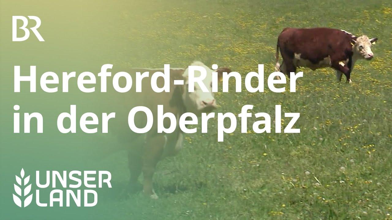 Br Oberpfalz