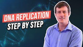 6 Steps in DNA Replication