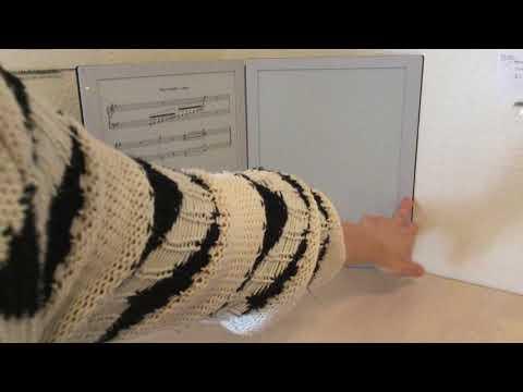 GVIDO Dual Screen Music Reader - Honest Review