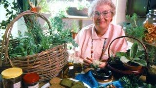 Linda Runyon Wild Food Radio, Episode 1: Teaching Wild Food To Children