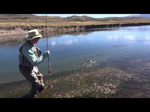 Patagonia Argentina: Estancia Tecka