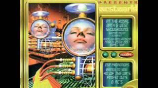 Dj Dougal & Dj Vibes  Dreamscape 24