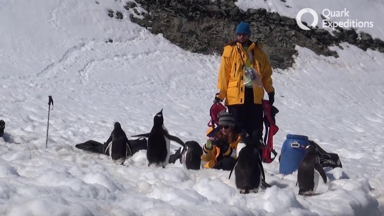 【動画】南極クルーズ