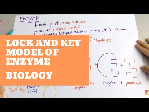 Lock and key definition