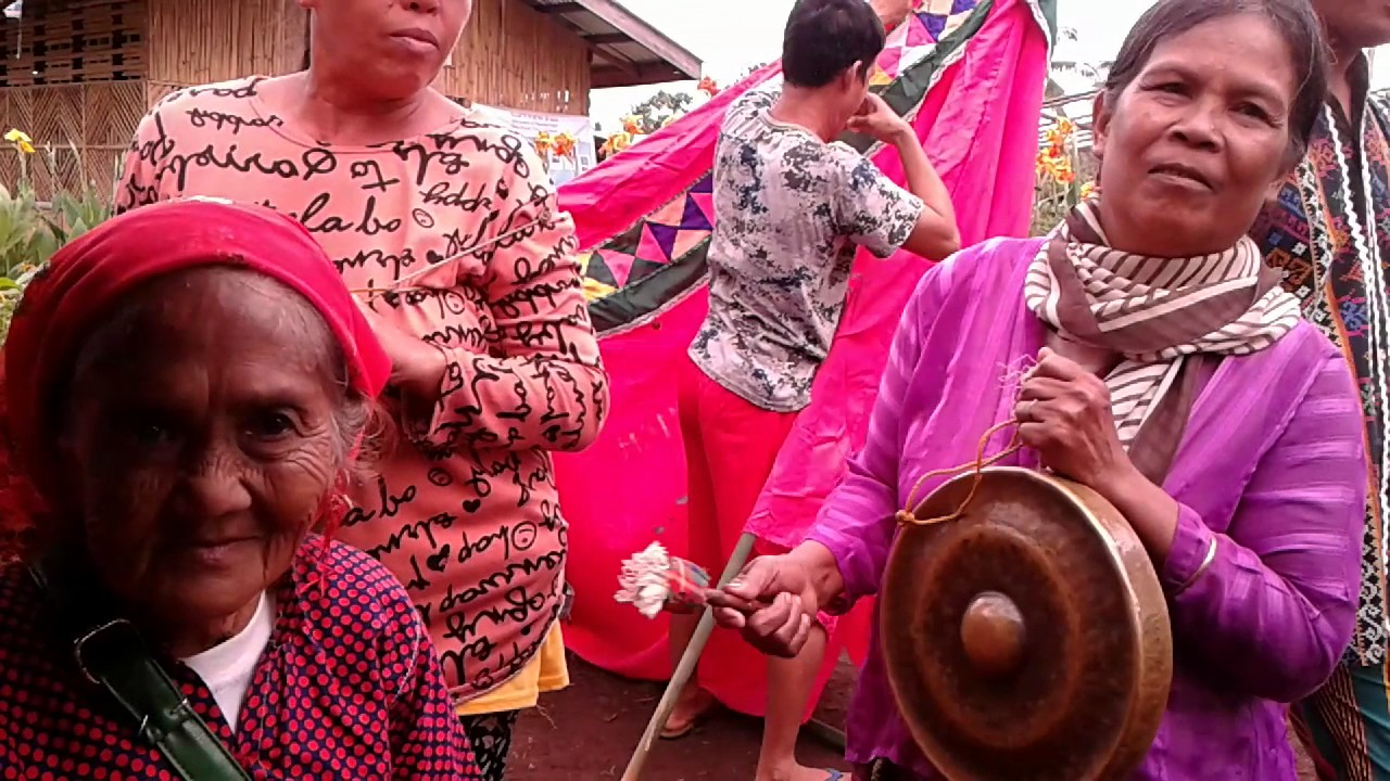 the economy og teduray indigenous peoples