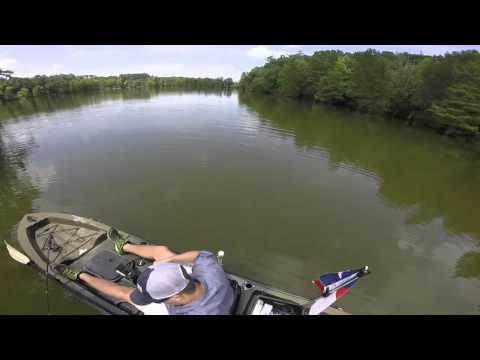 Stumpy Lake Virginia Beach, Va Bass Fishing