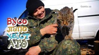 Вусолапохвіст в АТО: в бліндажах живуть собаки, коти та гуси