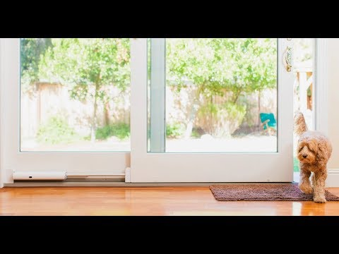 Wayzn Automatic Sliding Doors For Pets App Controlled Pet Door Youtube