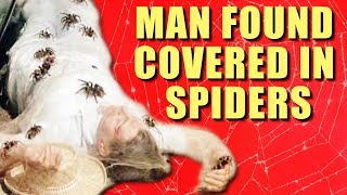 Man Found Dead Covered In Spiders - FACT or FICTION?