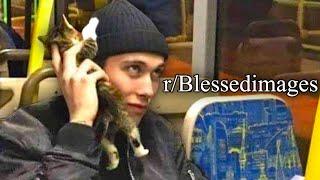 r-blessedimages-cat-phone