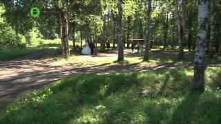 Нарушителей экологии будут ловить в парке Мира(, 2015-08-06T11:28:57.000Z)