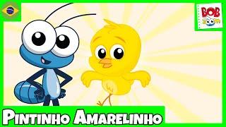 Pintinho Amarelinho - Bob Zoom - Video Infantil Musical Oficial