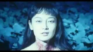 Tokyo Fist trailer(France)