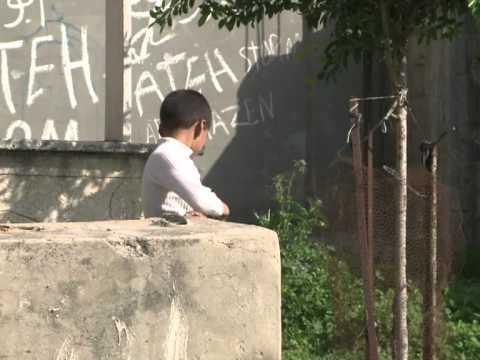 Killings haunt Gaza City graveyard families