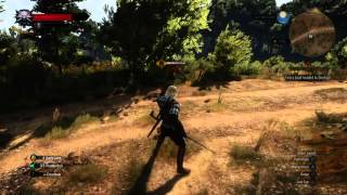 The Witcher 3: Wild Hunt - White Orchard Abandoned Site