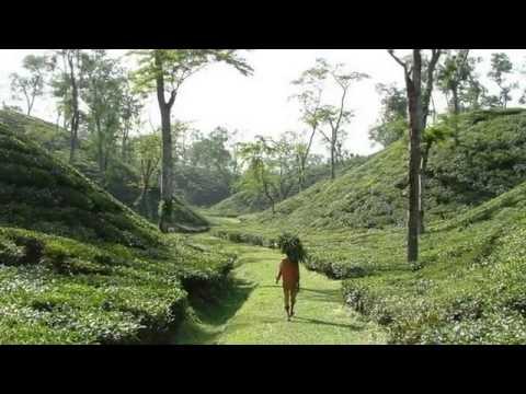 Sadhok Chan Miah, Bangla Folk Song, Bangladesh Dhire Dhire Jaio   YouTube