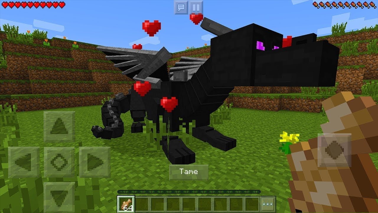 How To Tame A Ender Dragon In Minecraft Pocket Edition Ride Dragon Addon Youtube