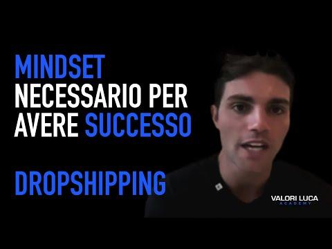 Mindset da adottare se vuoi diventare un dropshipper di successo