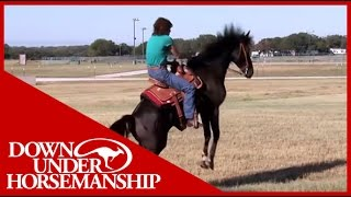 How To Teach a Horse to Stand Still While Being Mounted: Star Treatment