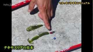キジハタ編PART5~でかっキジ・テキサスマニュアル thumbnail