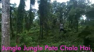 Local Tarzan (Watch Till The End)