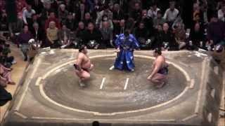鶴竜 vs栃煌山 の取組。2015初場所6日目。現地オリジナル撮影。 Grand S...