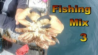 Fishing Mix 3 - Over The last few Weeks