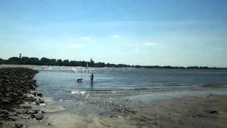 Ein sonniger Tag. 2011 am Wittenbergener Strand