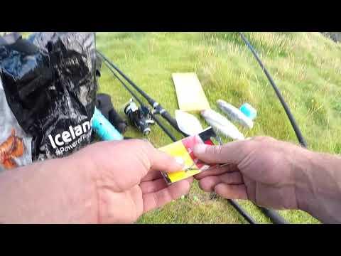 Ilfracombe Shore Fishing