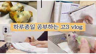 [고3 브이로그] 10시간 공부 브이로그 / 수능 원서…