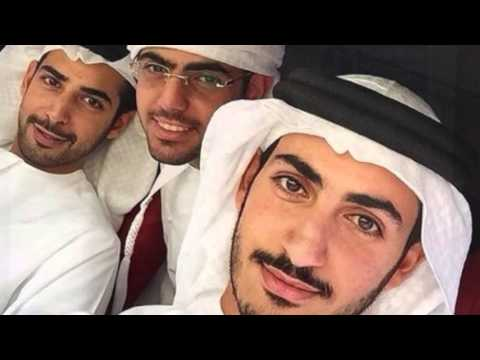 Mohammed Bin Sultan Bin Khalifa Al Nahyan