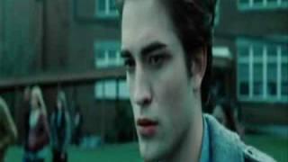 TwilightPuya - Doamna si Vagabondul
