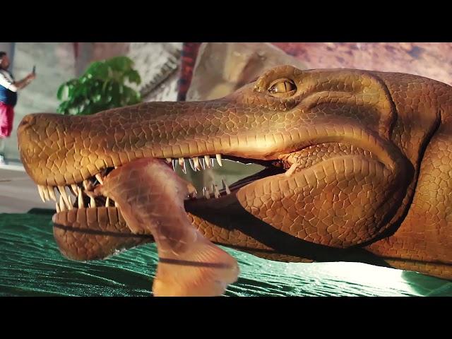 Dinosaurs Tour - Córdoba