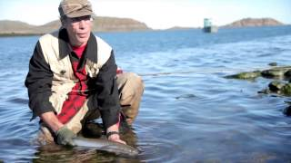 Fly Fishing In Nunavut