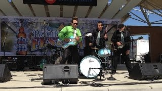Pitbull of Blues Band Rockin