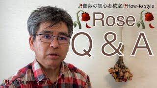 Rose Q&A🥀 green snap 仲間のネイビーさんとaさんから 質問を頂きま...
