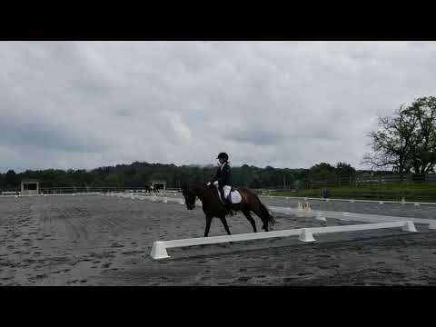 Proudly Shining and Hannah 2nd 3(2)