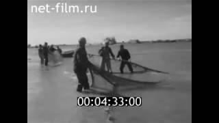 1974г. село Зюзино. Икрянинский район. Астраханская обл
